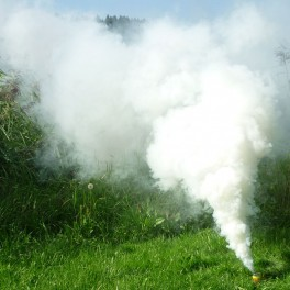 Smoke 3 White