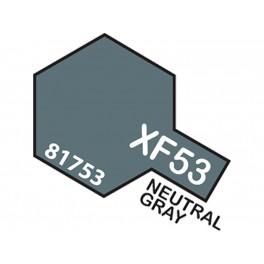 """Matiniai neutraliai pili dažai """"XF53"""""""