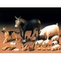 Gyvūnų rinkinys